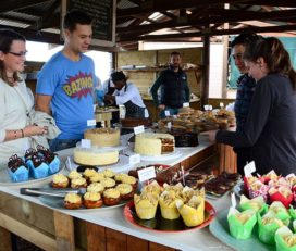 Outeniqua Family Market