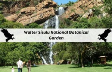 Walter Sisulu National Botanical Garden