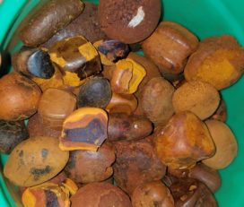 Grade A Cow Ox Gallstone South Africa