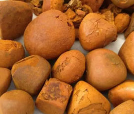 Where can i buy Grade A Cow Ox Gallstone